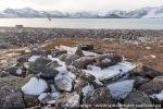 210912a_Raudfjordhytta_030_N