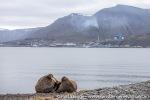 210715_Longyearbyen_18_N