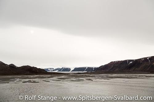 Lomfjord