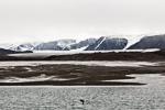f6z_Lomfjord_11Aug13_159