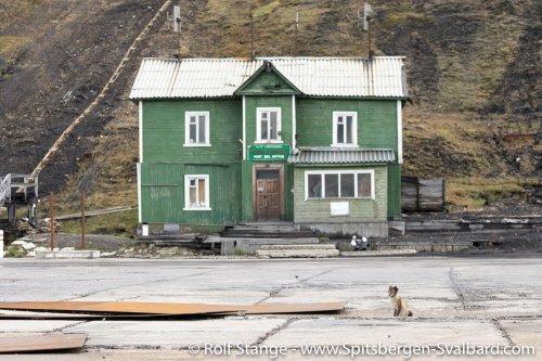 Gallery 5:Hornsund to Isfjord – Spitsbergen 2018